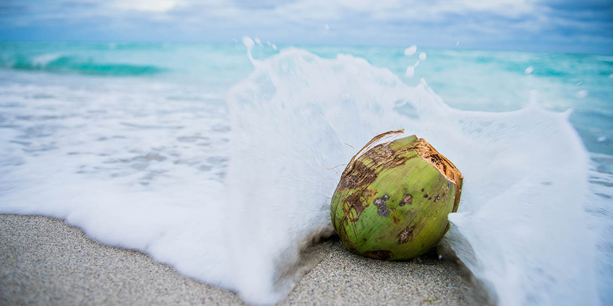 Does Coconut Water Go Bad