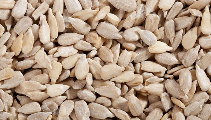 How to Store Sunflower Seeds